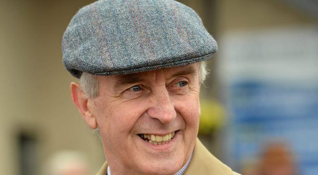 Jim Bolger: Saddles Lucida in Newmarket feature today
