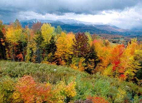 Fall Foliage in Vermont, New England