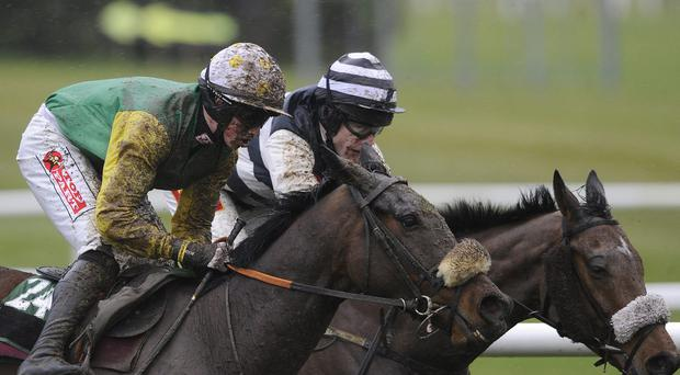 Ted Veale (left) will be expected to win under Barry Geraghty in the At The Races Novices' Chase at Roscommon. Photo: Alan Crowhurst/Getty Images