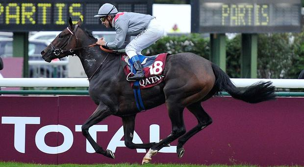 Treve, with Thierry Jarnet up, winning The Qatar Prix de l'Arc de Triomphe last October. Since then she has had her fair share of problems and has yet to hit the heights in any of her starts this year. Photo credit: Kristy Sparow/Getty Images