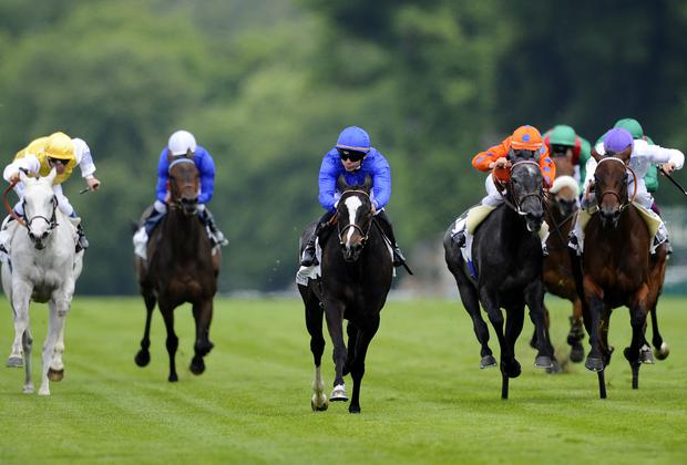 Maxime Guyon riding Fintry (C) win The Prix De Sandringham at Chantilly racecourse. Photo credit: Alan Crowhurst/Getty Images