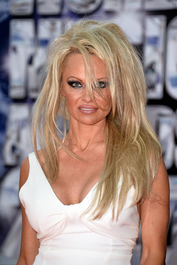 Pamela Anderson wore one seriously bad wig earlier this year