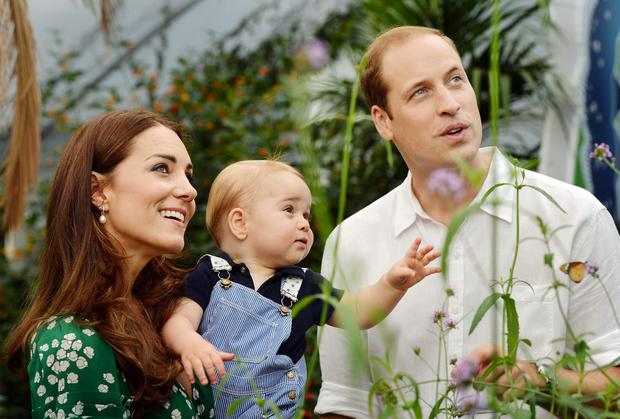 Catherine, Duchess of Cambridge holds Prince George as he and Prince William, Duke of Cambridge's look on while visiting the Sensational Butterflies exhibition at the Natural History Museum on July 2, 2014 in London, England.