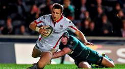 Tommy Bowe makes a welcome return to the Ireland squad