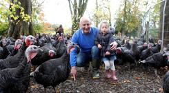 Paul and Charley Hogan on the family's farm in Cortown, Kells, Co Meath. The Hogans are rearing a rare breed of turkey imported from America and hope to have 200 birds primed and fattened for the Christmas market. Photo: Kieran Maguire.