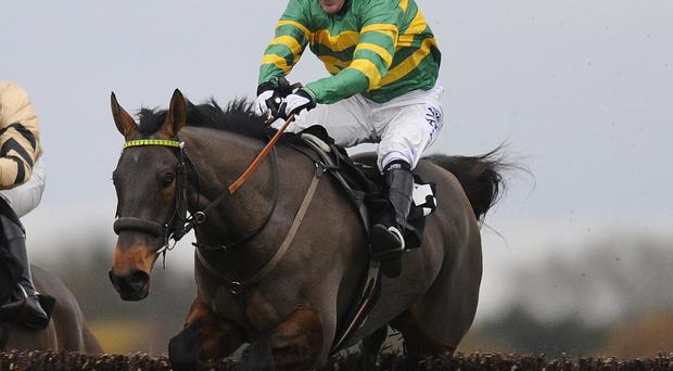 The Paul Webber trained Cantlow has more to offer at this level and is worth a small punt at 16/1 in today's Gold Cup at Cheltenham. Alan Crowhurst/Getty Images