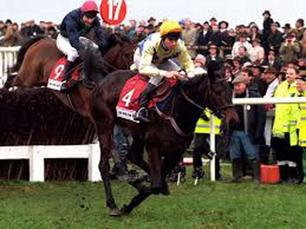 The 1996 Cheltenham Gold Cup winner Imperial Call has died