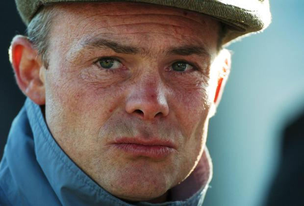 In his second career, Maguire has carved out a successful training business and gained a reputation as a fine producer of top-class horses. Matt Browne / SPORTSFILE