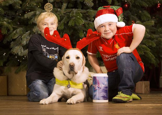 A Wish For Christmas.Make A Wish Christmas Tree Launched By Brothers Lucas And