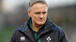 Joe Schmidt only enhanced his reputation after Ireland claimed the 2014 Six Nations and a clean sweep in the Autumn Internationals