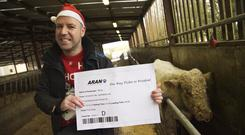 December 2014: John Carmody from Animal Rights Action Network (ARAN) presenting Benjy The Gay Bull with a 'One way ticket to freedom' while waiting to be transported from Hillside Animal Sanctuary, Claremorris, Co. Mayo to his new home in The United Kingdom. Photo : Keith Heneghan