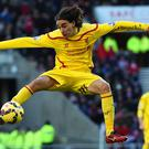 The summer signings are starting to settle at Liverpool and the performance of Lazar Markovic (pictured), in particular, are more than just encouraging.
