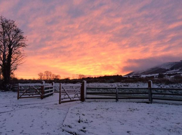 Trisha Flynn sends in this shot of a beautiful morning in Ballinvreena, Co Limerick