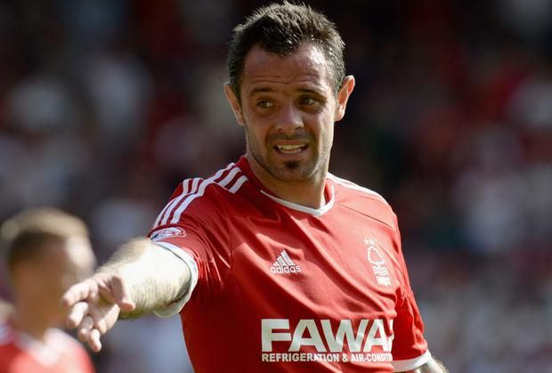 Andy Reid has started just six games for Nottingham Forest this season. Photo: Tony Marshall/Getty Images