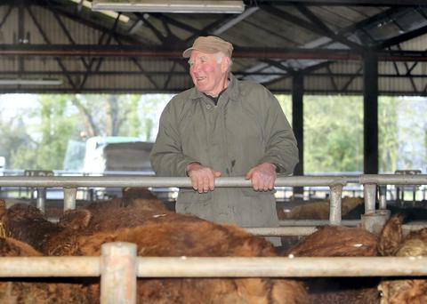William Deeley from Cahercrea, Loughrea checking the stock at Loughrea Mart. Picture: Hany Marzouk