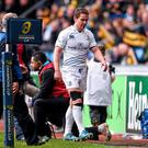 Eoin Reddan was hugely influential for Leinster before picking up an injury