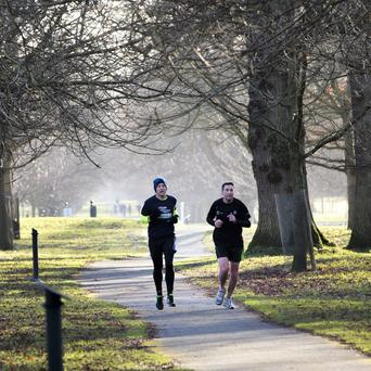 Joggers in Phoenix Park today after another cold and frosty night. Picture by Fergal Phillips.