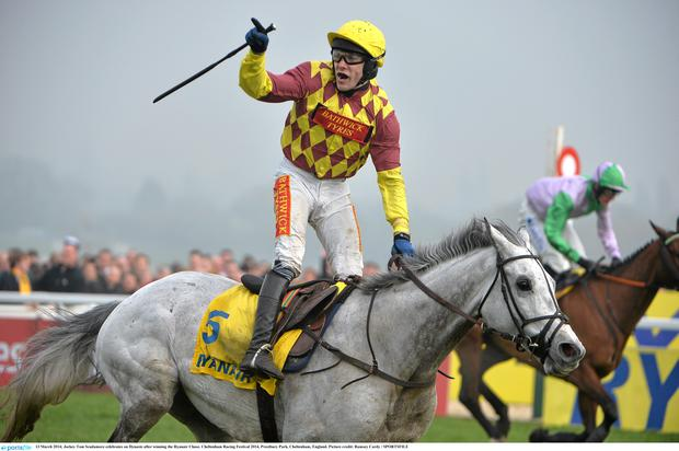 Tom Scudamore celebrates on Dynaste after winning the Ryanair Chase
