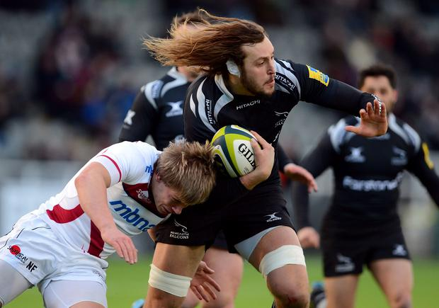 Josh Furno of Newcastle Falcons (R) challenged by Nathan Fowles of Sale Sharks during the LV Cup rugby match between Newcastle Falcons and Sale Sharks