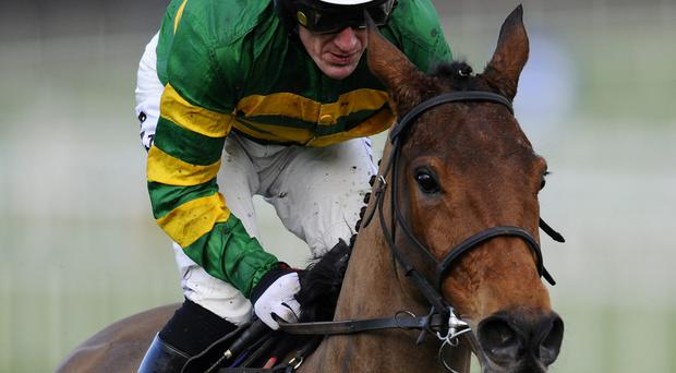 Carlingford Lough and Tony McCoy can land tomorrow's Hennessy for trainer John Kiely and his owner JP McManus