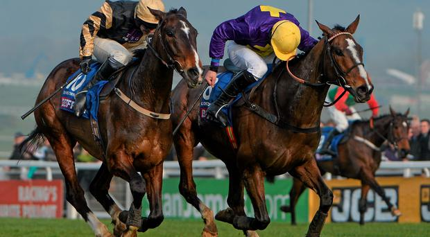 On His Own (left) and Lord Windermere - here fighting out the finish of last year's Cheltenham Gold Cup