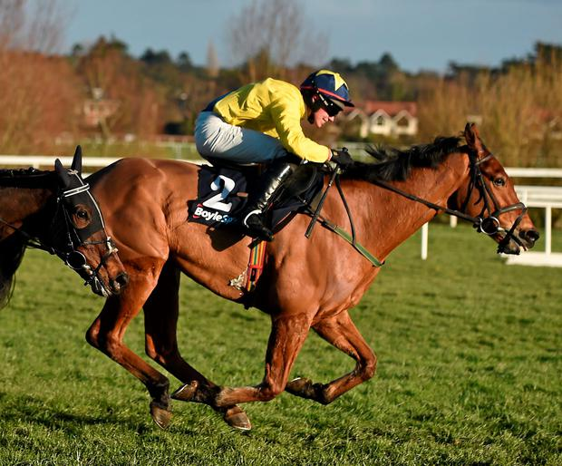 Foxrock, with Adrian Heskin up, on their way to winning the BoyleSports Chase