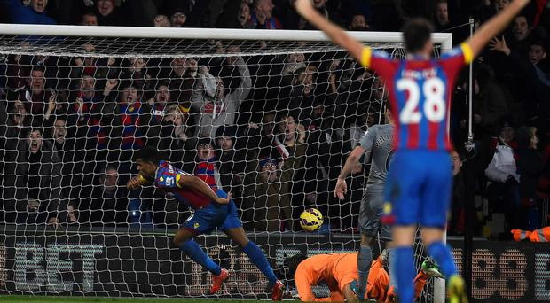Crystal Palace's Fraizer Campbell scores past Newcastle United's Tim Krul