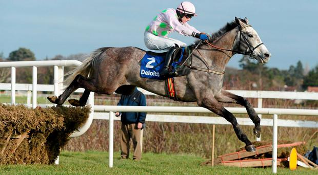 Champagne Fever, with Paul Townend up