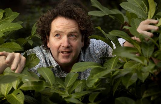 Celebrity gardener Diarmuid Gavin prunes back his Irish business as UK company thrives
