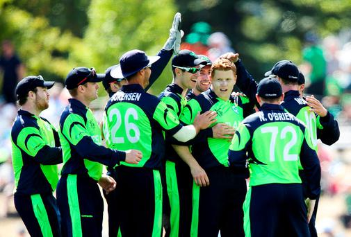 Kevin O'Brien celebrates with his Ireland teammates after taking the wicket of West Indies batsman Dwayne Smith during their ICC Cricket World Cup clash in Nelson. Photo: Hagen Hopkins/Getty Images