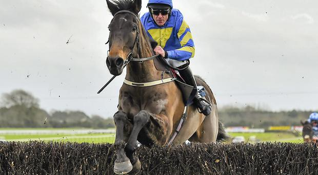Mallowney, with Davy Russell up, jumps the last en route to winning the Underwriting Exchange Dan Moore Memorial Chase at Fairyhouse.