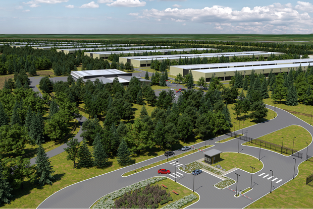 For the project in Athenry, Apple will recover land previously used for growing and harvesting non-native trees and restore native trees to Derrydonnell Forest. Photo: Apple