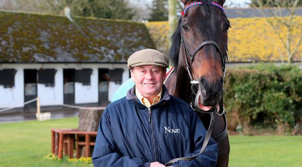 Nicky Henderson is pictured with Champion Chase favourite Sprinter Sacre at his Seven Barrows yard