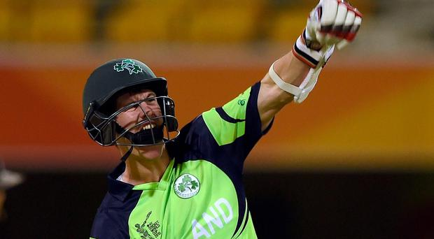 Ireland batsman George Dockrell celebrates after scoring the winning runs during the 2015 Cricket World Cup Pool B match between Ireland and united Arab Emirates (UAE) at the Gabba in Brisbane. Photo: AFP/Getty Images