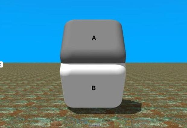 Another optical illusion - The Surface color of both A and B parts is identical. Use a finger to cover the place where both parts meet...