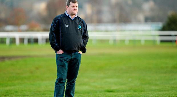 Gordon Elliott has two Gigginstown house owned debutants entered in Grotesque and Stoneford