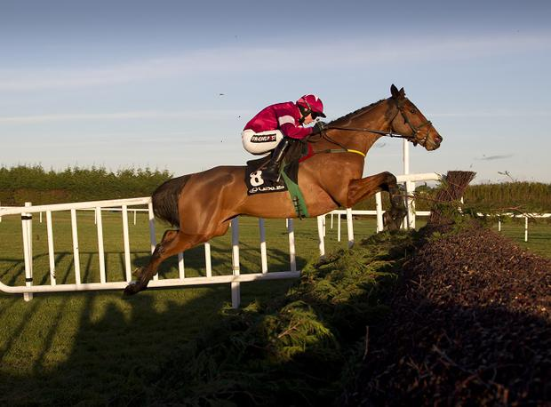 Road To Riches and Bryan Cooper cursing to victory in the Lexus Chase (Grade 1) Leopardstown Christmas Festival Photo: Patrick McCann 28.12.2014