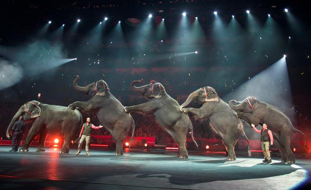 The Ringling Bros. and Barnum & Bailey Circus said it will phase out its iconic elephant acts by 2018. (AP Photo/Feld Entertainment Inc., Gary Bogdon)