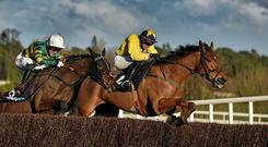 Foxrock (right) is ready to join the already-robust Irish challenge in the Ryanair Chase at Cheltenham. Photo: Barry Cregg / SPORTSFILE