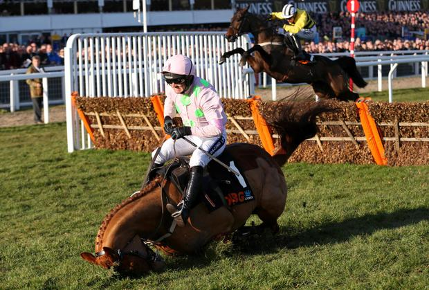 Annie Power, with Ruby Walsh up, falls at the last during the OLBG Mares' Hurdle at Cheltenham. Photo: Action Images via Reuters / Matthew Childs