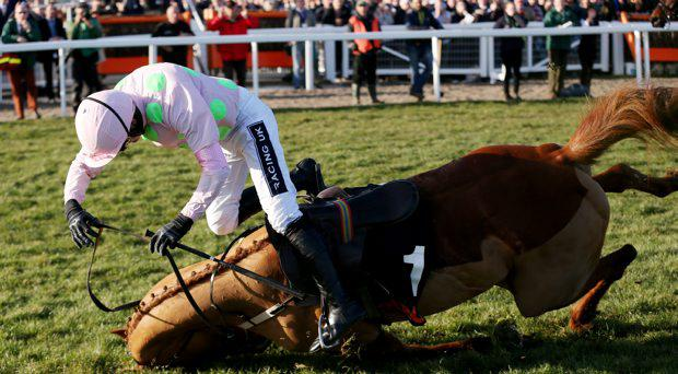 Ruby Walsh on Annie Power falls at the last during the 16:00 OLBG Mares' Hurdle