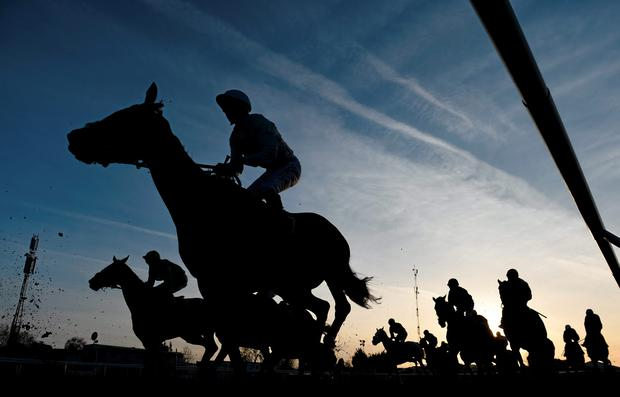 A man who died after being taken ill during racing at Dundalk on Friday evening has been named as Willie Buckley, a member of the Irish Horseracing Regulatory Board's security team.