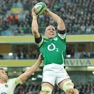 Paul O'Connell wins possession in the lineout