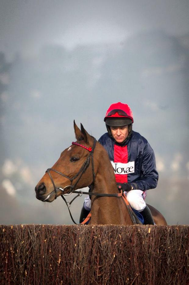Bob's Worth and Barry Geraghty