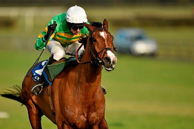 Mark Walsh, pictured here riding with Kitten Rock, right, on their way to winning the Limestone Lad Hurdle, may not ride again this season (Barry Cregg / SPORTSFILE)