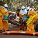 A team picks up a suspected Ebola case in Guinea Credit: Misha Hussain