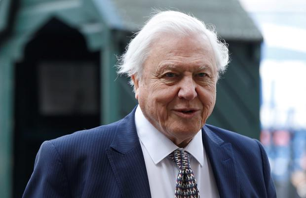 Naturalist David Attenborough arriving for a memorial service for his brother Richard Attenborough Credit: Suzanne Plunkett