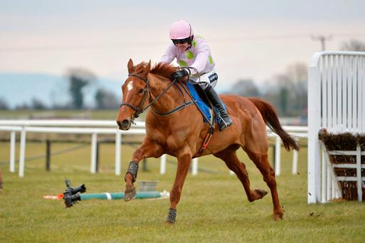 Annie Power and Ruby Walsh are set to bid for redemption