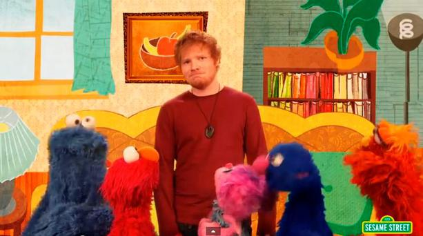 Ed Sheeran performs 'Two Different Worlds' with the Sesame Street crew