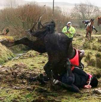 A horse falls after attempting to jump over the car during the charity riding event in Greencastle, Co Tyrone